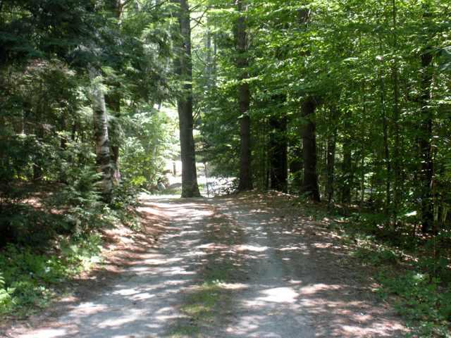 road to archery field